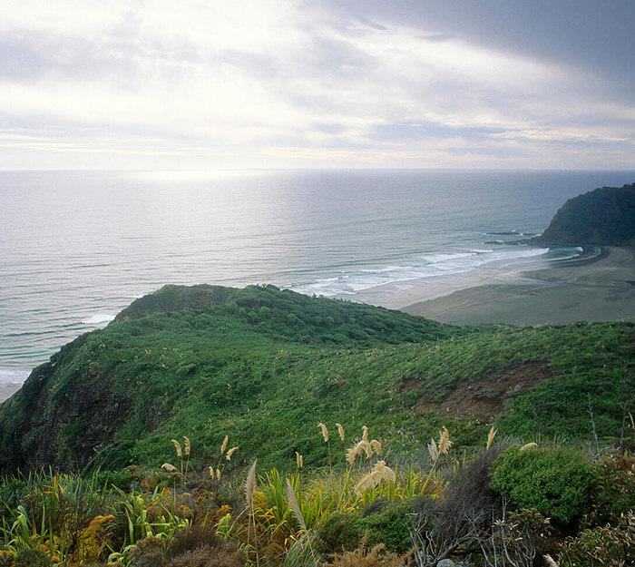 Karekare Beach New Zealand, view
