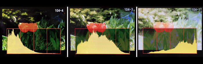 Check exposure with histogram